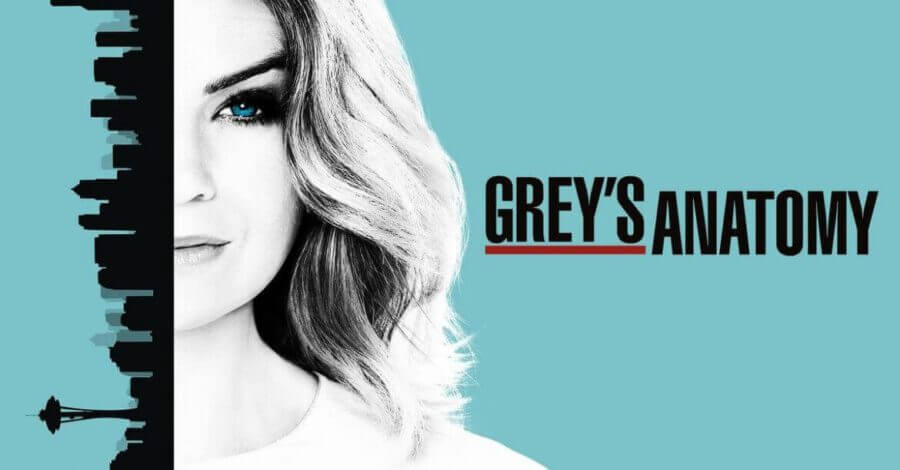 When will Season 14 of Grey\'s Anatomy be on Netflix? - What\'s on Netflix