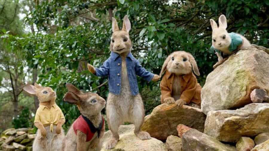 Will Peter Rabbit Come To Netflix What S On Netflix