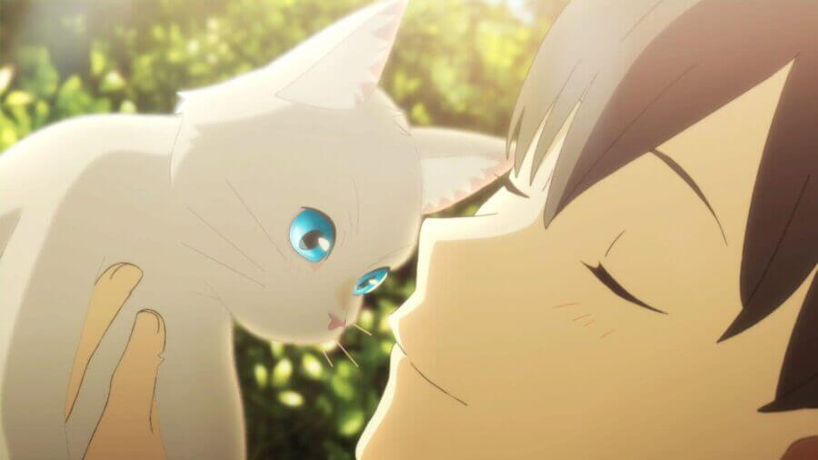 Netflix Original Anime 'A Whisker Away': Plot, Cast, Trailer ...