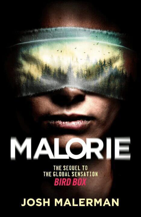 netflix horror bird box sequel reportedly in development Malorie png