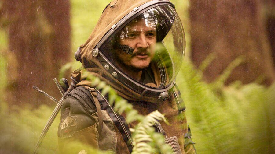 perspective pedro pascal