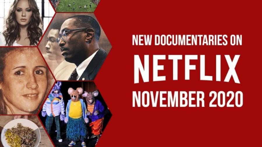 Nov Doc Netflix min