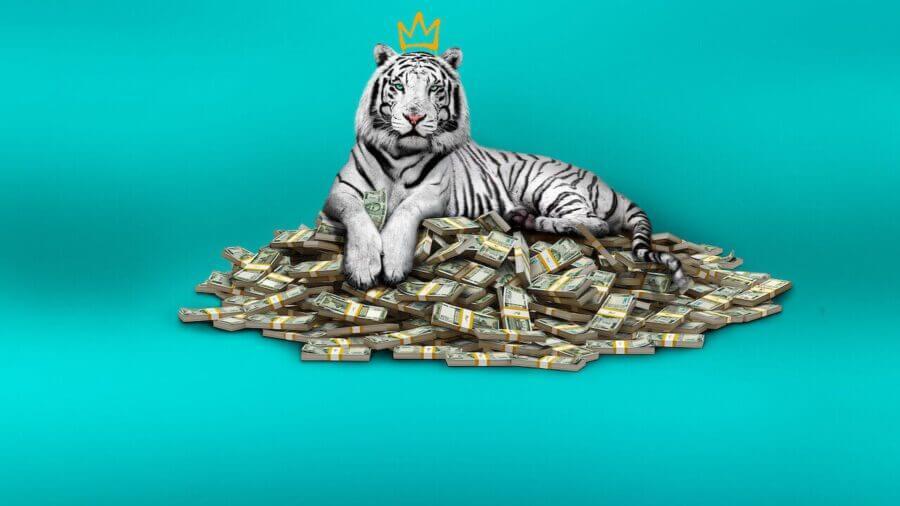 El tráiler del reparto de la trama del tigre blanco y fecha de lanzamiento de Netflix