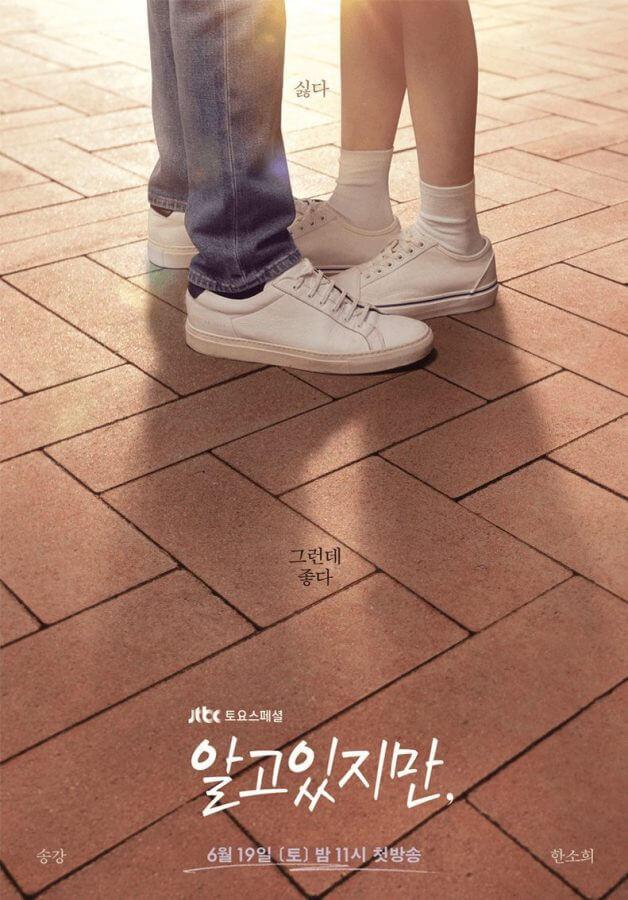 netflix k drama nevertheless season 1 jtbc poster