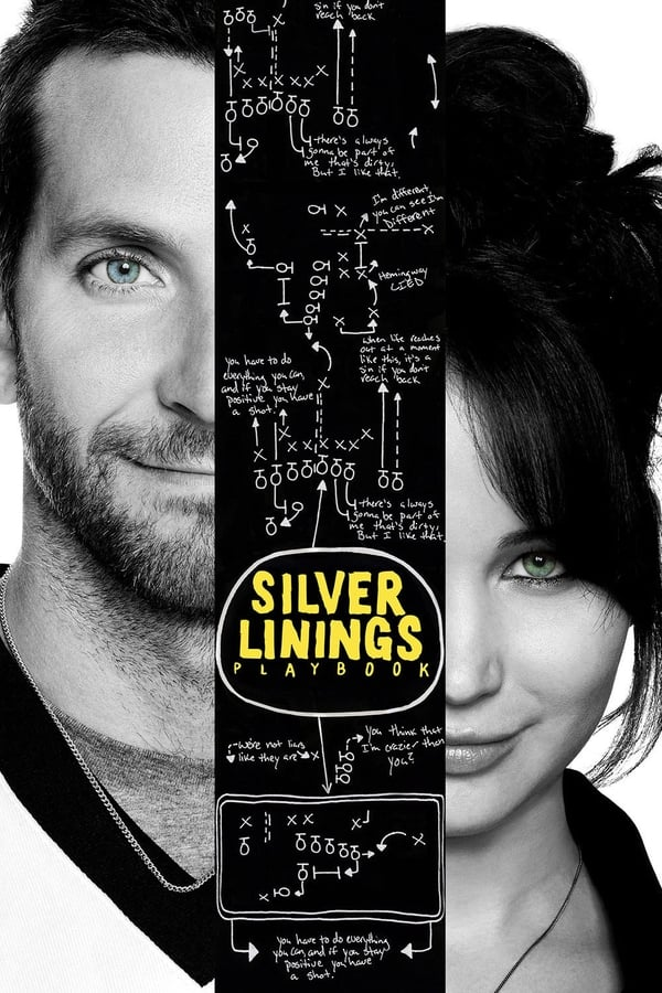 Silver Linings Playbook on Netflix