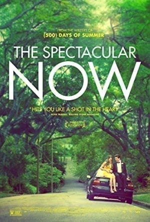 The Spectacular Now  on Netflix
